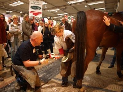 Messe Pferd und Jagd Hannover